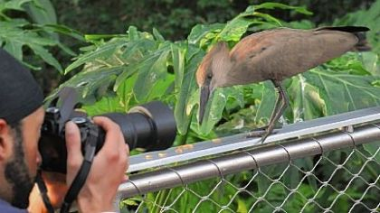 National Aviary photo safaris provide rare encounters with exotic birds