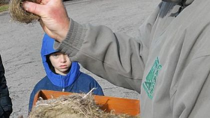 "Daniel Krapp, 8, of South Park, listens Saturday to John Doyle, a naturalist with the Allegheny County Parks Department, talk about the animal hair used to line one of the bird nests collected during ""Bird Nests: Exposed and Explained"" held at South Park, near the Oliver Miller Homestead."