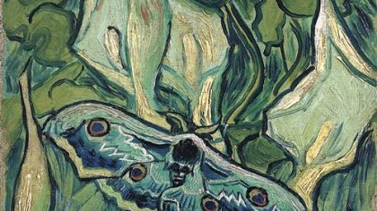 This van Gogh exhibit outshines all others