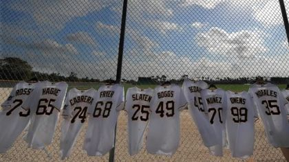 Pirates jerseys line the outfield fence in Bradenton, Fla. They will be signed by the players for Pirate Charities.