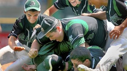 Allderdice players mob winning pitcher Kevin Silvio, bottom, after defeating Brashear in the City League baseball championship Thursday at PNC Park. Allderdice came from behind to win, 4-2.