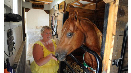 Beth Voyles of Washington, Pa., pets one of her horses, G.R. Shakin the Piggybank, at her McAdams Road home on Thursday.