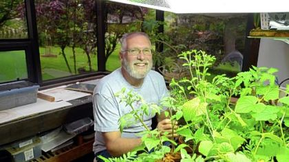 Hank Brinzer of Clinton grows plants using a technique called aquaponics. Water from a fish tank is pumped up to a tray of plants to feed them. The water then slowly drains back into the tank.