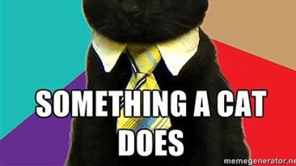 Business Cat: A spin-off of Advice Dog, this cute feline, usually in front of a colorful background, gives advice.