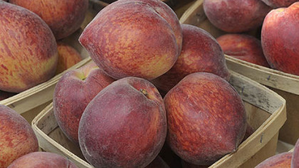 Peaches at the Bethel Park Farmers Market