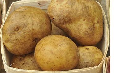 potatoes from Harvest Valley Farms at the  East Liberty market.