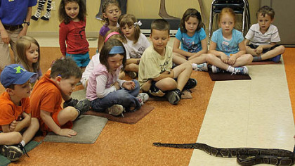Birundi, 19, a ball python native to Africa, visits with children during Zoo Camp, Pittsburgh Zoo & PPG Aquarium's summer program for children ages 4 to 13. The camp, now in its 25th year, aims to teach campers about zoo animals and conservation through animal encounters, guided tours and classroom lessons.