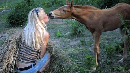Jen Urksa of Arabian Rescue Mission spends time with one of more than 40 horses being relocated after being rescued last week from a farm in Cecil.
