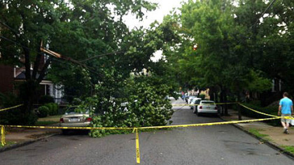 A downed tree is blocking Howe Street in Shadyside.