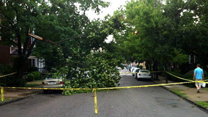 A downed tree blocks Howe Street in Shadyside after heavy thunderstorm swept through the region Wednesday.