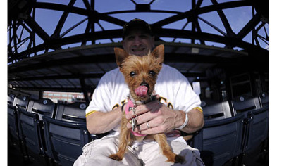 Dan Honan and his yorkshire terrier, Isabella, enjoy the Pirates game Tuesday at PNC Park.