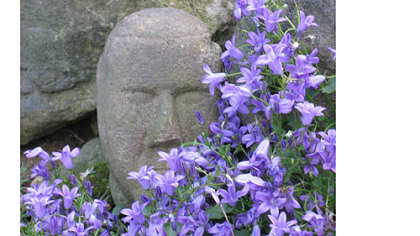 A small stone head, in the garden of Jim and Mary Beth Crawford, surrounded by Campanula