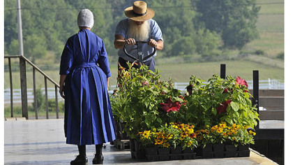 Flowers, in addition to produce, are up for bid at the Tri County Produce Auction in New Wilmington, PA.