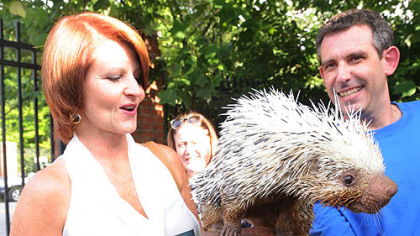 "Mary Werley-Delula with ""Rhiannon"" the porcupine."
