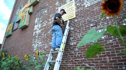 "Artist Harry ""Hawkeye"" Demel finishes posting a sign on the side of the Carnegie Historical Society's building, the site of a sunflower rain garden and mural that was made possible due to a $6,000 grant from the Pennsylvania American Water Company in Carnegie."