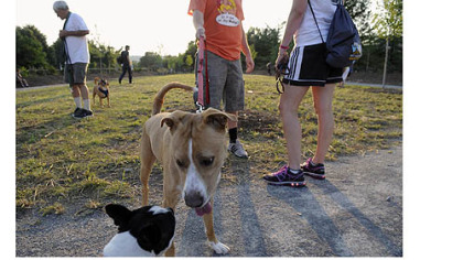 Josh Linton keeps his dog on a leash as he talks to Beth Reeger at the newly opened and dedicated South Side Dog Park.
